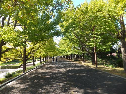 昭和天皇記念公園4