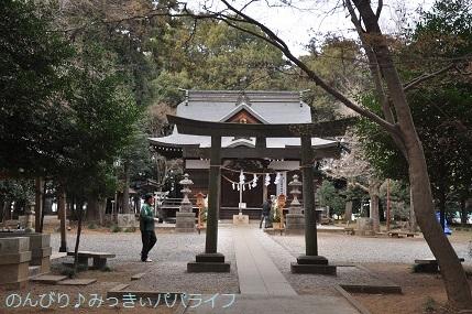 hatsumoude201901.jpg