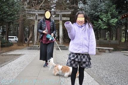 hatsumoude201902.jpg