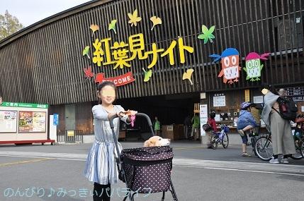 shinrinkoenkaedeen201801.jpg