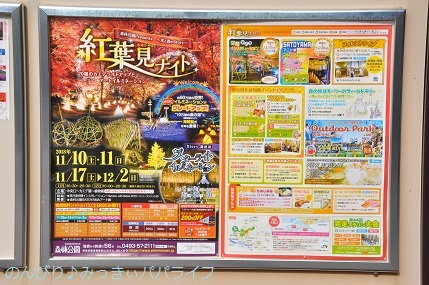 shinrinkoenkaedeen201802.jpg