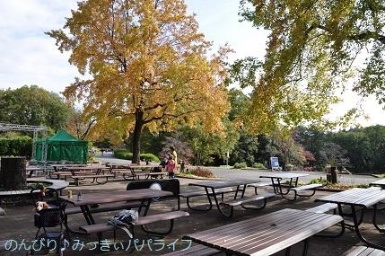 shinrinkoenkaedeen201814.jpg