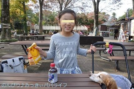 shinrinkoenkaedeen201815.jpg