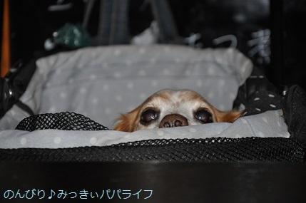 yakitori20181012.jpg