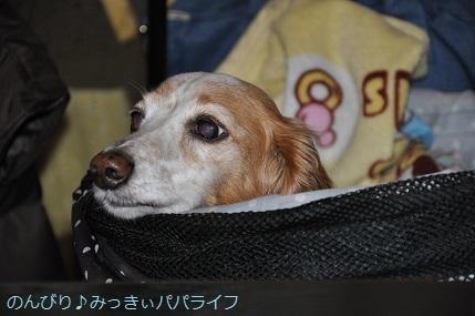 yakitori20181201.jpg