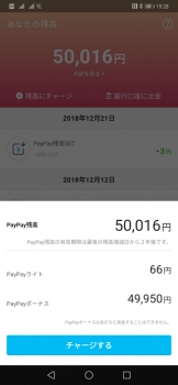 paypay2.jpg