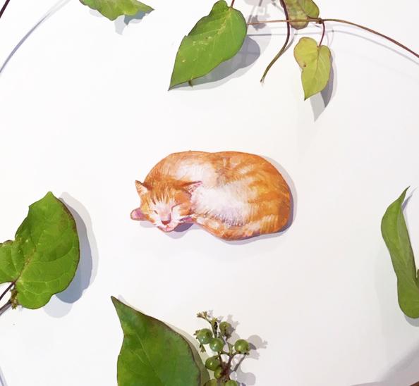 1月眠り猫aのコピー