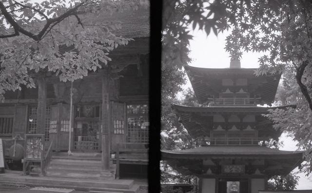 konikaeyea100016.jpg