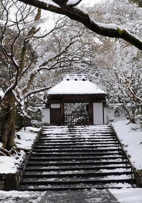 0190105雪の法然院
