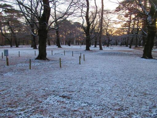 202  雪景色(1)