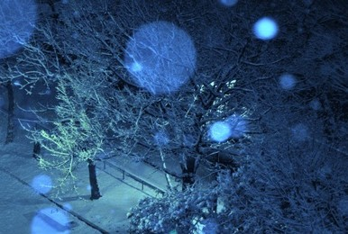 雪4 (2)