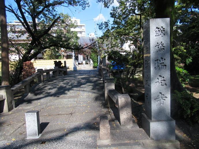 181106井高野 (1)