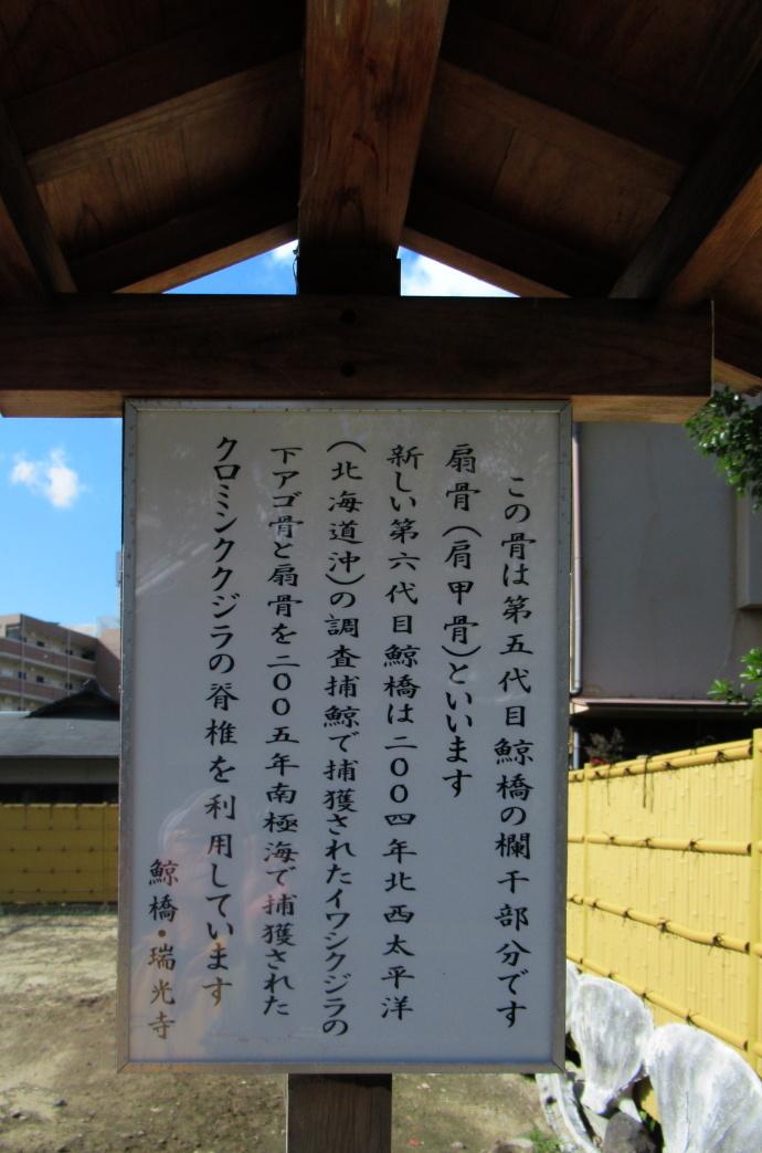 181106井高野 (2)