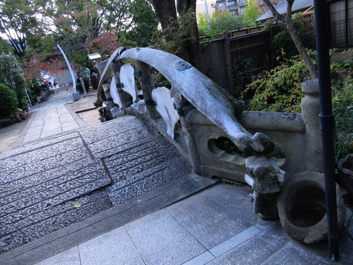 181106井高野 (4)