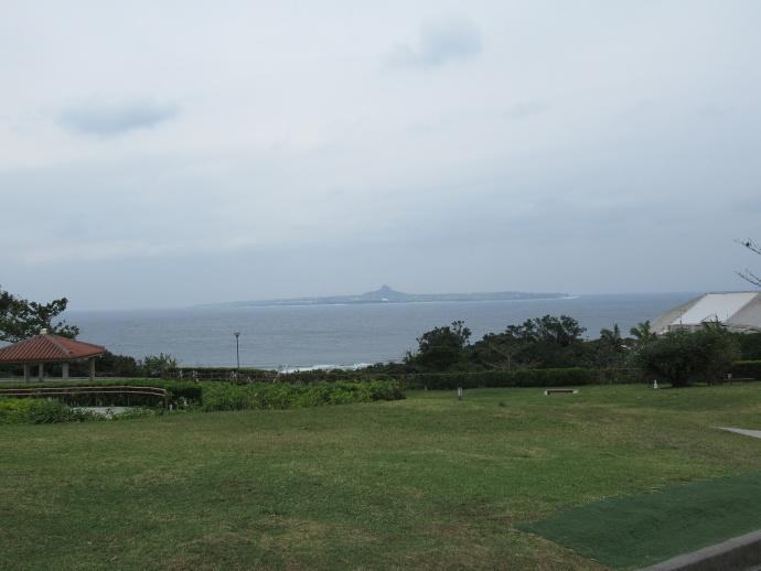 190108沖縄 (195)