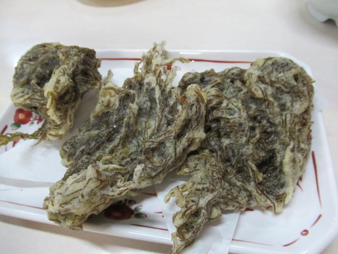 190108沖縄 (51)