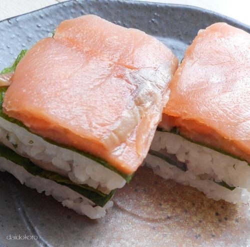 salmon19-0103.jpg