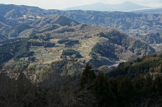 20190126-11 大野山より谷ケの畑地