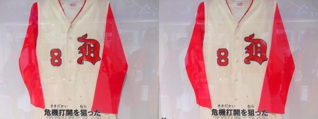 ナゴヤドーム ドラゴンズ ワールド②(交差法)