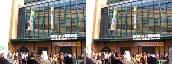 阪神-広島 甲子園球場 2018.4.10①(交差法)