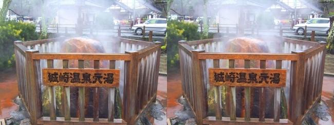 城崎温泉元湯 ♨鴻の湯(交差法)