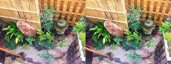 城崎温泉 旅館まつや202号室 雨の中庭の風景(平行法)