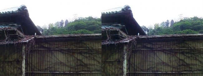 城崎温泉 旅館まつや202号室 雨の朝の風景(平行法)