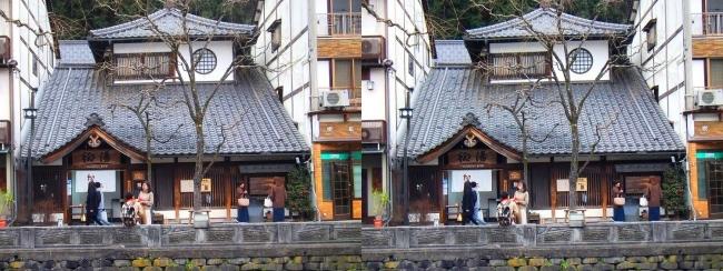 城崎温泉 ♨柳湯(平行法)