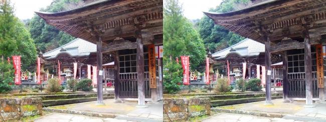 城崎温泉 温泉寺 仁王門・薬師堂(平行法)