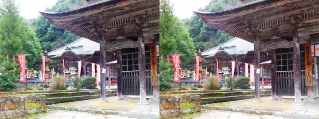 城崎温泉 温泉寺 仁王門・薬師堂(交差法)