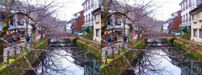 城崎温泉 木屋町通り(交差法)