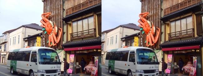 城崎温泉 駅通り3Dカニ看板①(交差法)