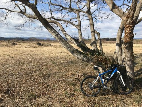 【連休は毎日サイクリング公園へ】・2