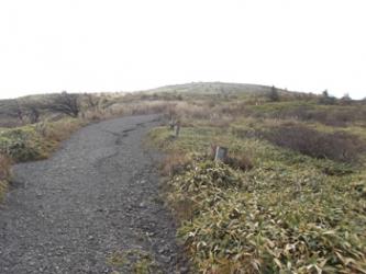鉢伏山への道