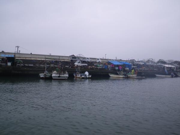 桑名港の水揚げ