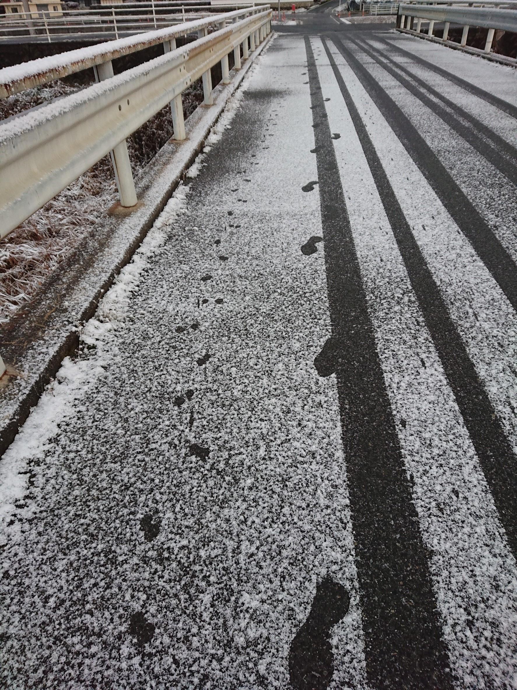 12月28日の雪_181228_0029