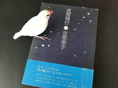 Yakanhiko20180803.jpg