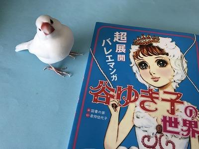 taniyukiko201902.jpg