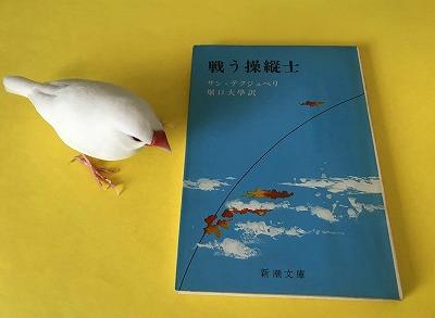 tatakausojushi20181102.jpg