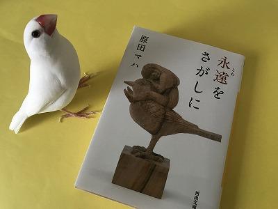 towaosagashini201812.jpg