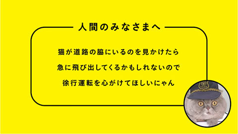 YellowHatKoutsuNyanzen10