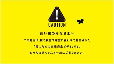 YellowHatKoutsuNyanzen2