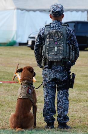 guarddog3_110418