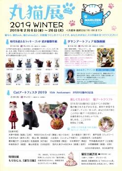 猫img542 (1)