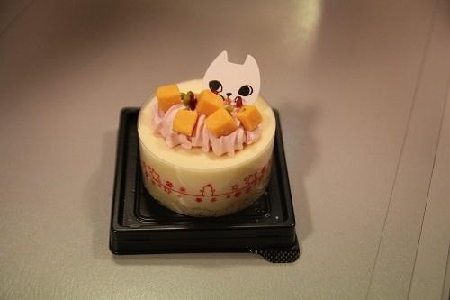 ケーキ20190207