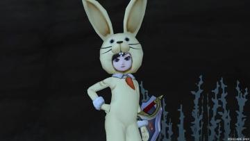 ウサギの着ぐるみふたたび・・・