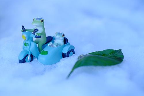 ツバキアキラが撮ったカエルのコポー。雪の中をサイドカーつきのバイクで走っていく、コポタロウとコポミ。