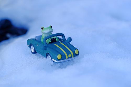 ツバキアキラが撮ったカエルのコポー。雪の中を車で走って行くコポタロウ。