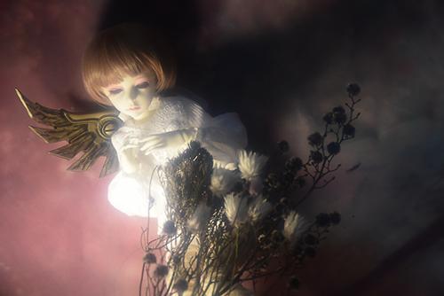 機械の翼を持つ少女、DOLLZONE・GillのAnne(アンヌ)。ドライフラワーと一緒にアンニュイなひととき。