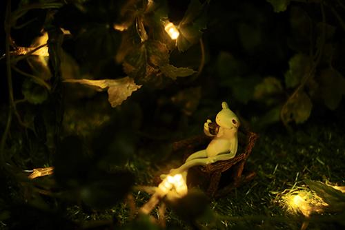 ツバキアキラが撮ったカエルのコポー。夜の静かな灯りの中で、コーヒーを飲んでいるコポタロウ。